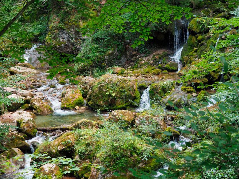 Klammbach mitten im Wald